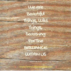 brilliance-within-1-william-drake